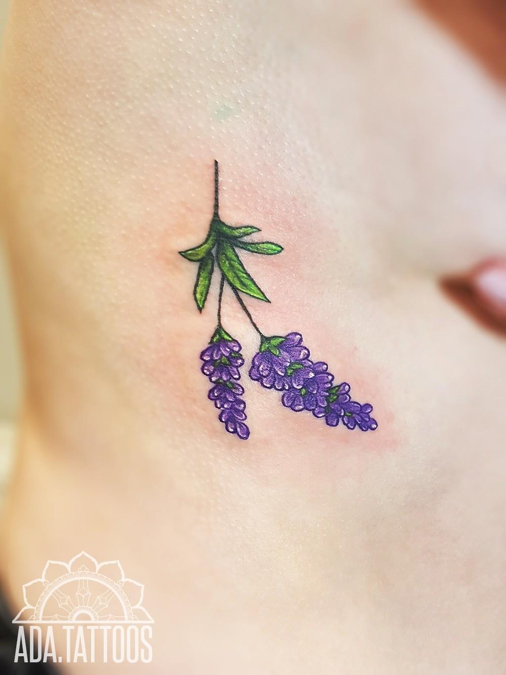 lawenda lavender