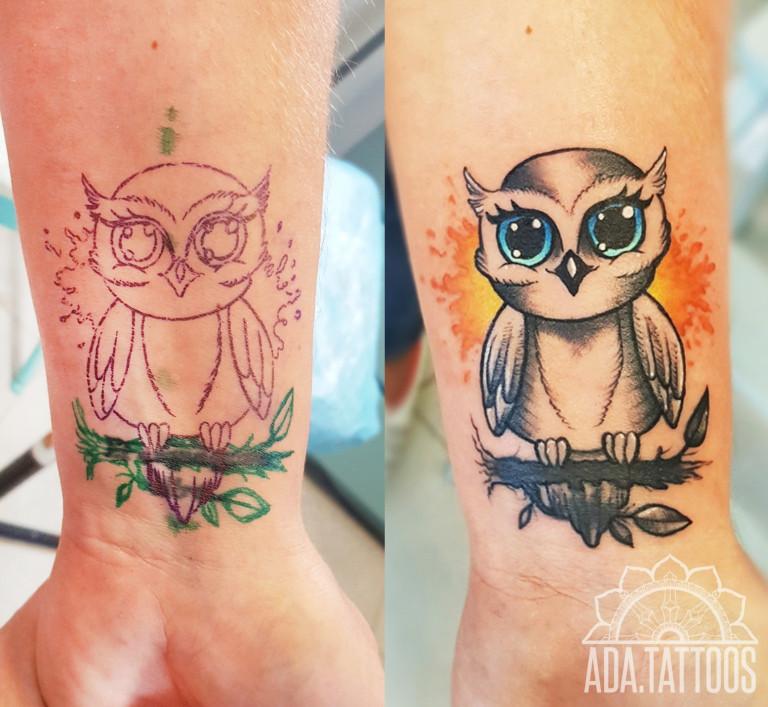 sowa owl cover
