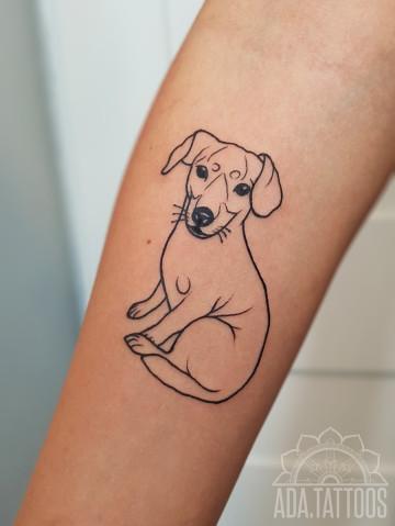 pieseł dog