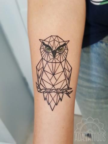 sówka geo owl