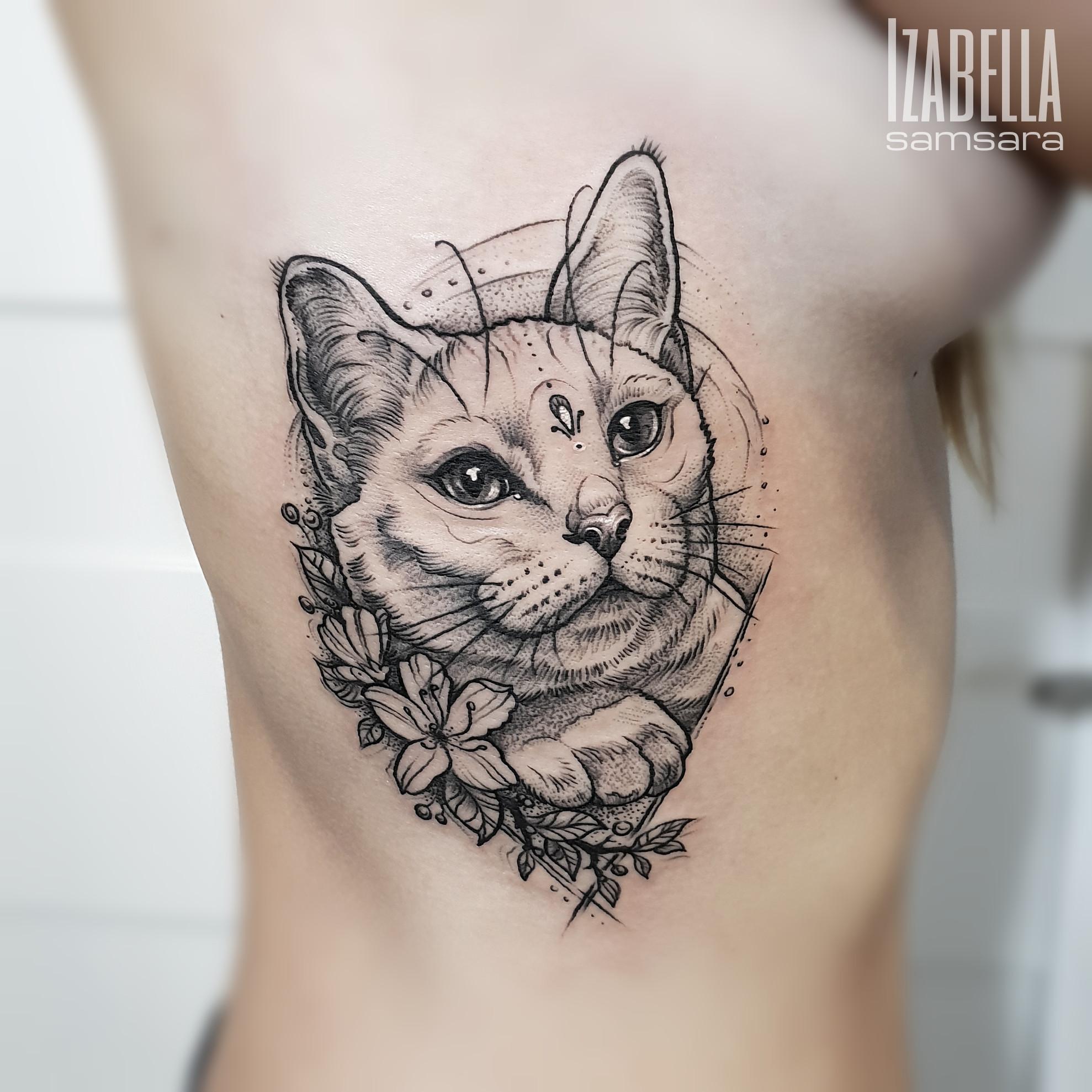cat ribs kot żebra