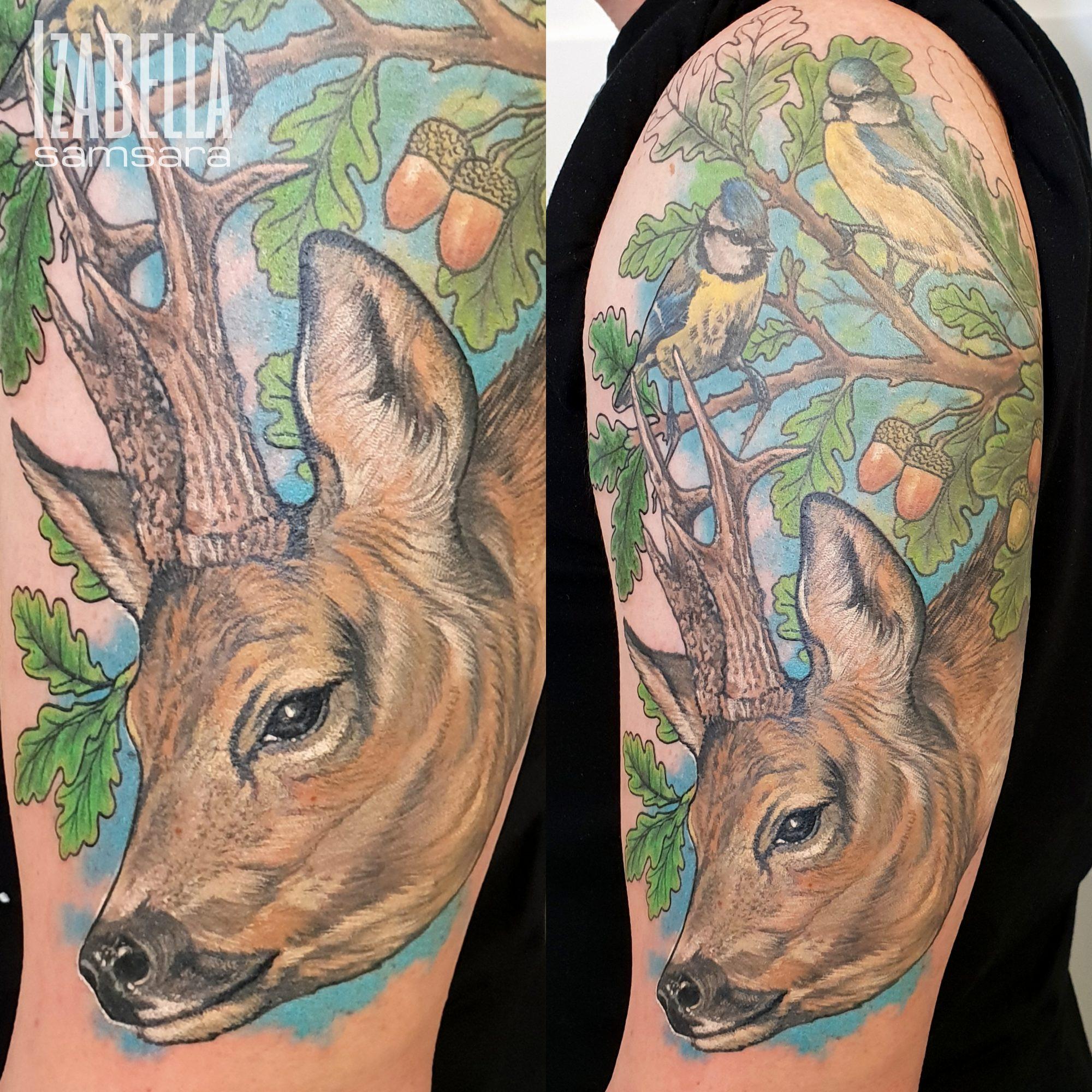 jeleń deer
