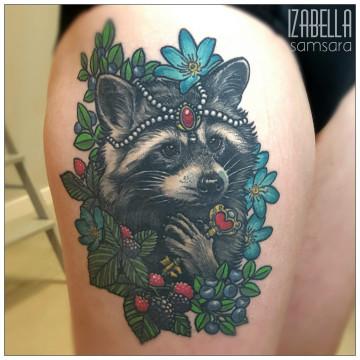 szop raccoon
