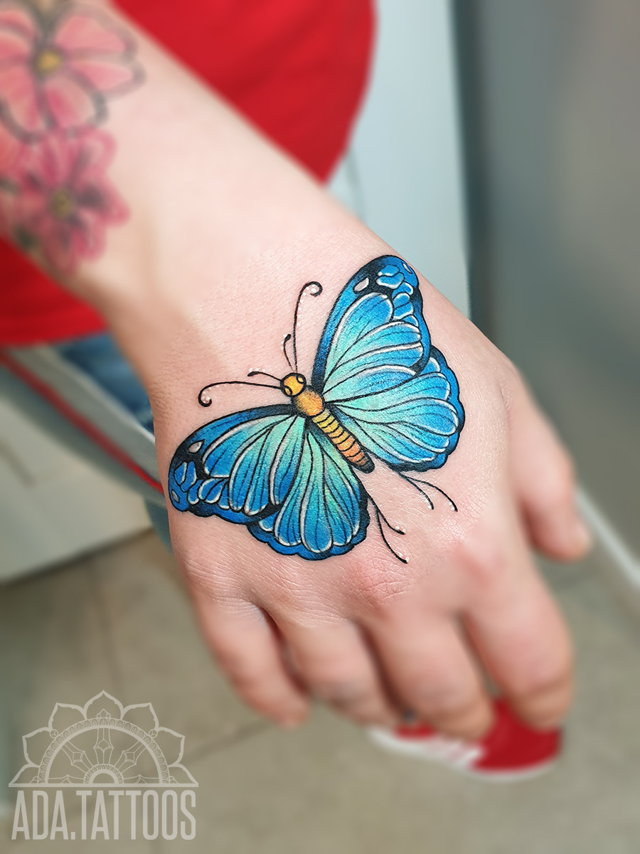 motyleq butterfly