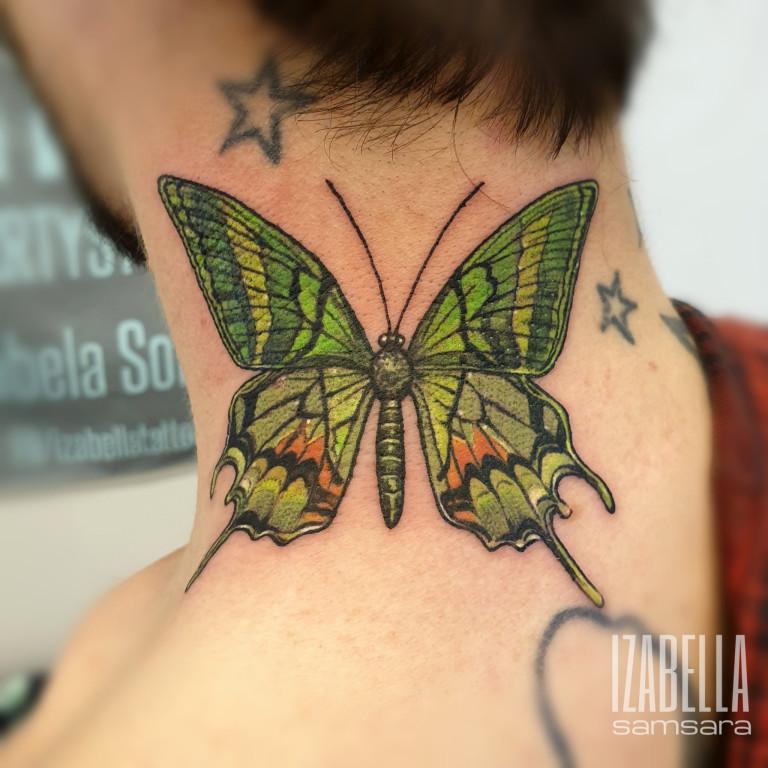 motyl szyja butterfly neck