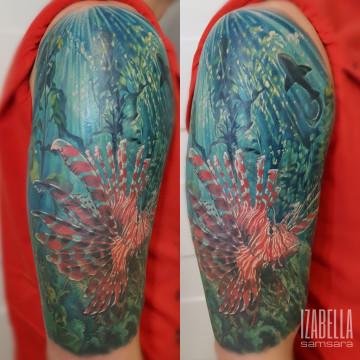 podwodny rybka ocean underwater fish