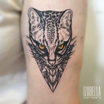 kot geometryczny geometrical cat