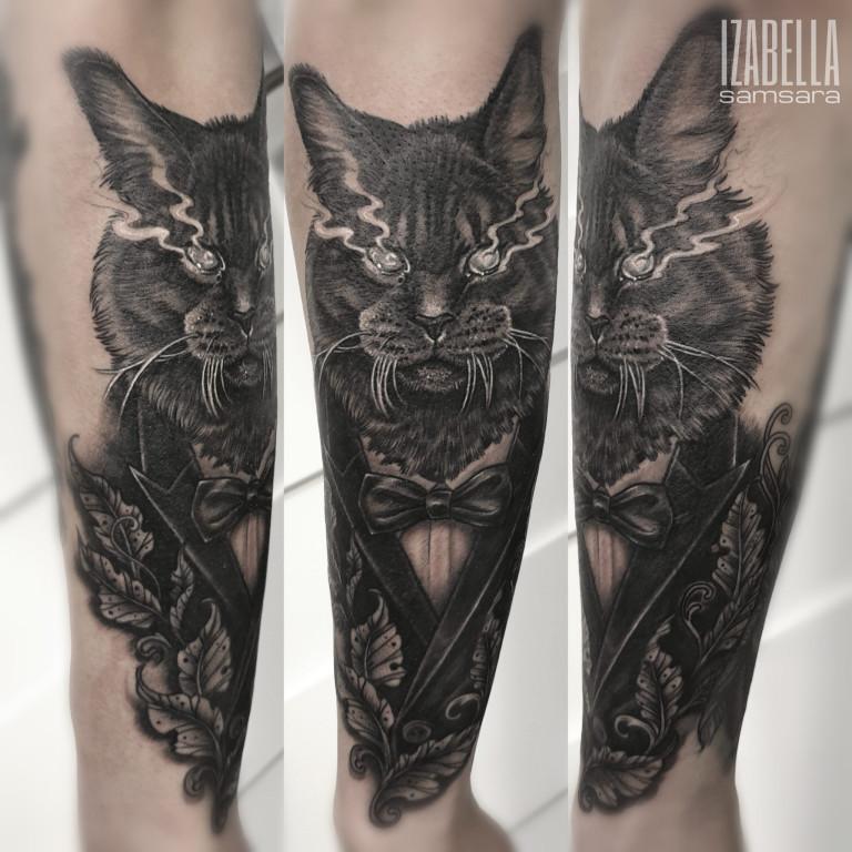 black cat czarny kot