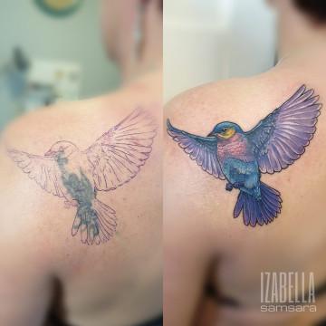 purple bird purpurowy ptak