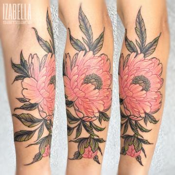 pink flower różowy kwiat